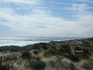 Beach p