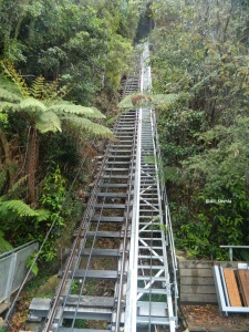 blue mountains 10